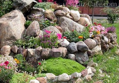 Удачное сочетание растений и камней