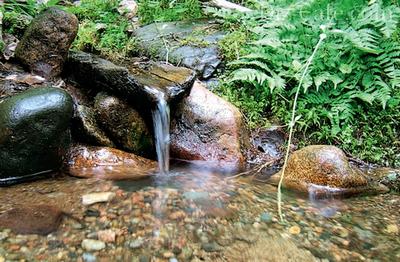 Водный ручей в саду