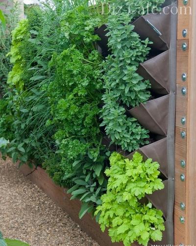 Подвесные контейнеры с зеленью