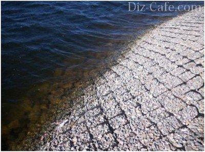 Пологий берег водоема укрепляется объемной георешеткой