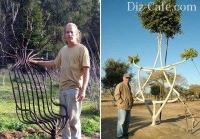 Скульптурная композиция из нескольких деревьев