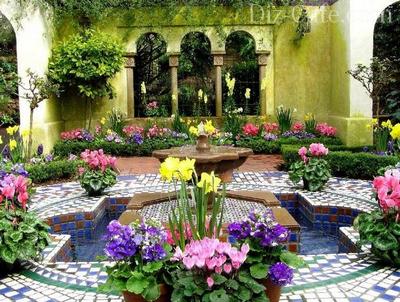 Богатство красок мавританского сада