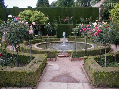 Розарий у пруда