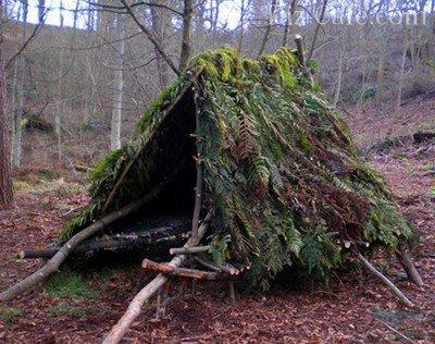 Лесной шалаш для ночевки
