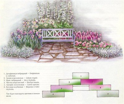 Клумба с лилиями в розово-сиреневой гамме