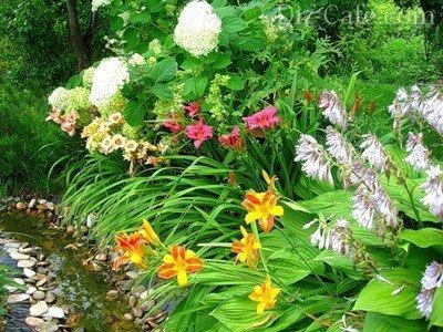 Цветочные композиции с лилейниками