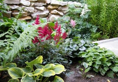Гармоничная композиция из цветов с ажурной и плотной листвой