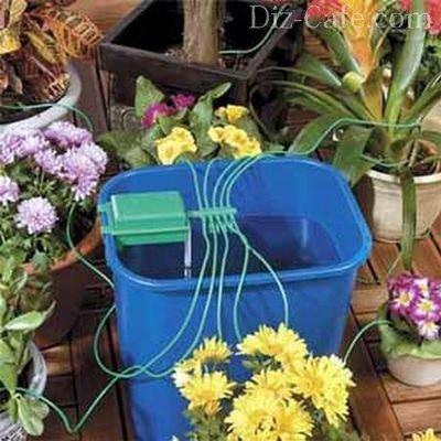 Полив растений через фитиль
