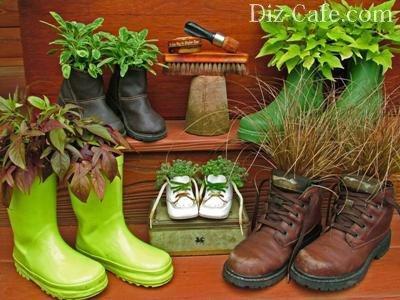 Обувная семейка