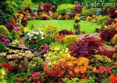 Цветник в пейзажном стиле