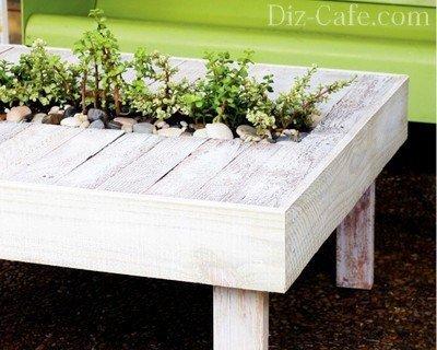 Столик, украшенный пряными травами