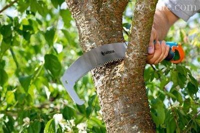 Ножовка для работ в саду