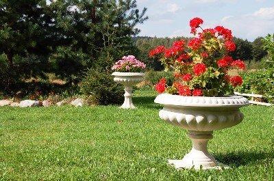 британская ваза на газоне