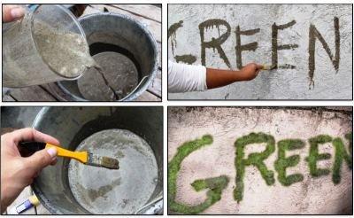 Создание граффити из мха