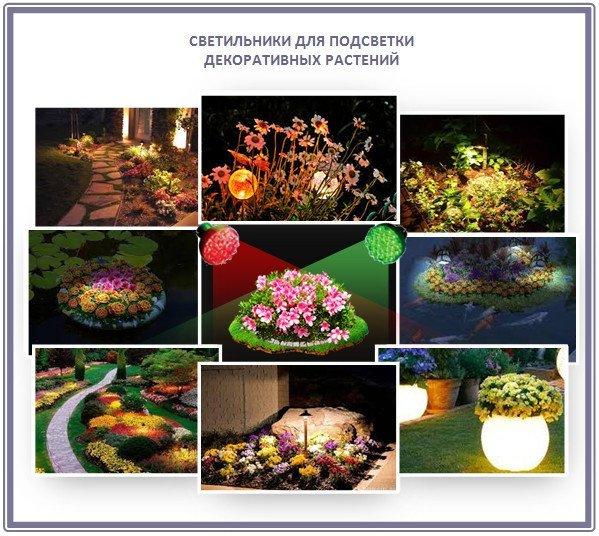 Светильники для подсветки декоративных растений в саду