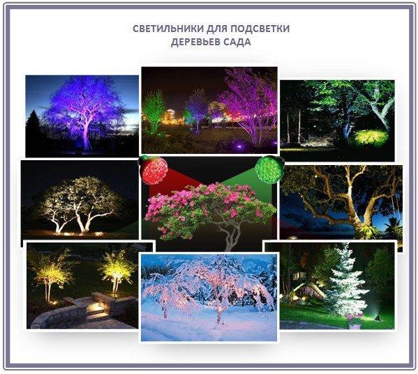 Как выбрать светильники для подсветки дерева?