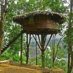 Беседка на дереве в виде домика папуасов