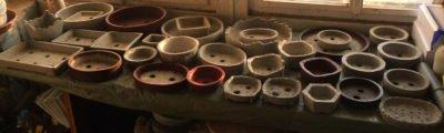 Горшки для бонсаев