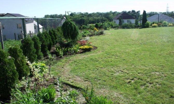 Английский сад на дачном участке