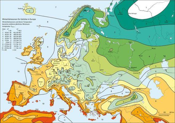 Карта зимостойкости и морозостойкости растений Европы