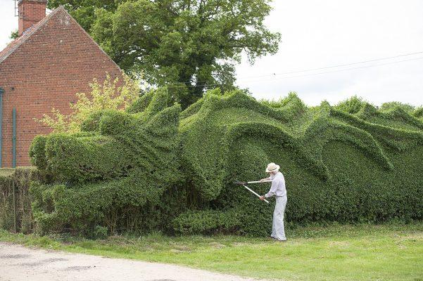 Садовник стрижет большие кусты