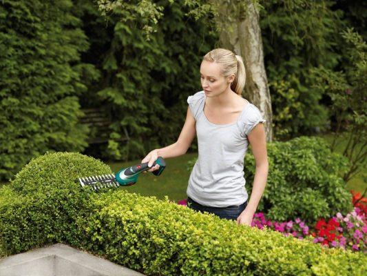 Садовник в работе