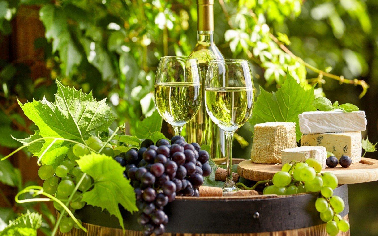 фотообои с виноградной лозой считаются такие части