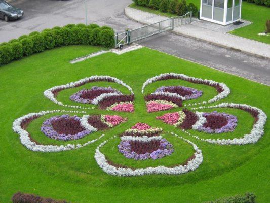 Ковровая клумба в форме 5-тилепесткового цветка