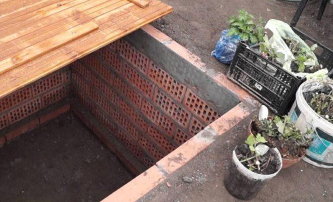 Подготовка растений к размещению в погребе
