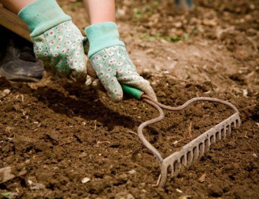 уборка почвы