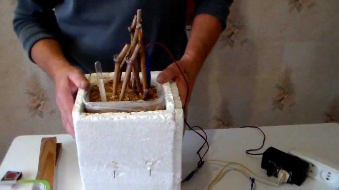 Кильчеватор для винограда