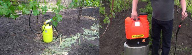 Виды опрыскивателей для виноградной лозы
