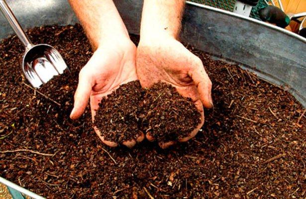 Готовый растительный компост