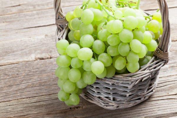 Кисть винограда Богатяновский