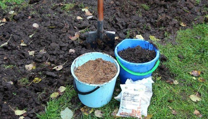 Подготовка участка под посадки малины