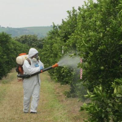 Обработка растений химикатами требует соблюдения мер предосторожности