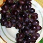 Гибрид винограда Шоколадный