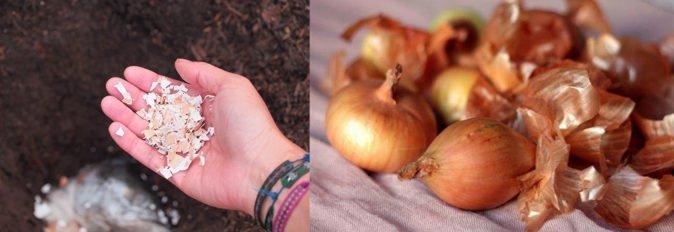 Яичная скорлупа и луковая шелуха