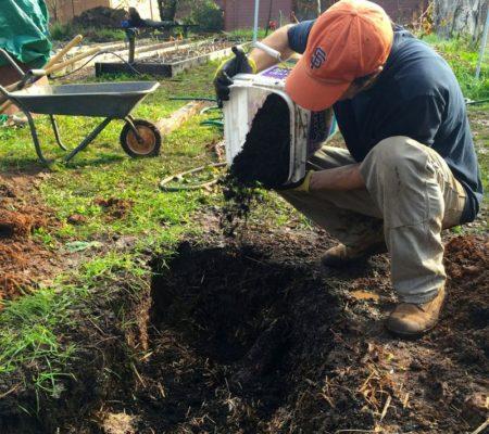 Внесение удобрений в посадочную яму