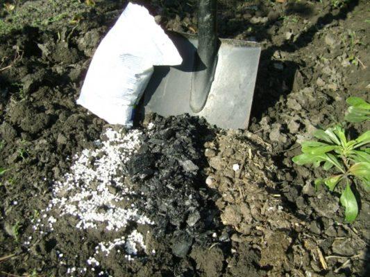 Минеральные удобрения на почве