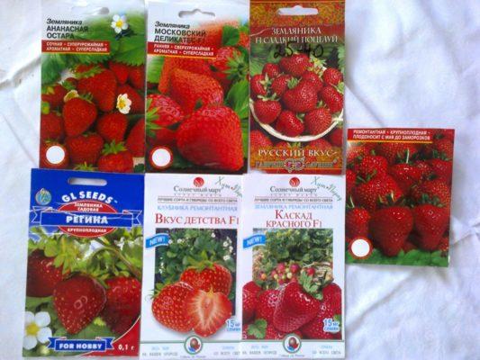 Покупные семена клубники