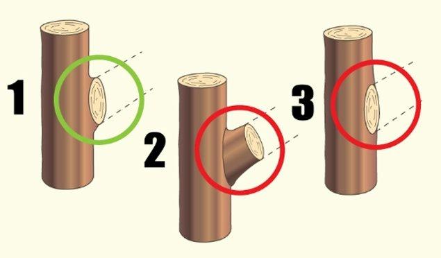 Схема среза «на кольцо»