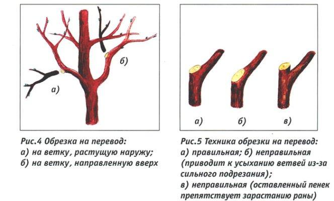 Схема обрезки на боковое ответвление
