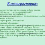 Описание клястероспориоза
