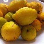 Северный лимон