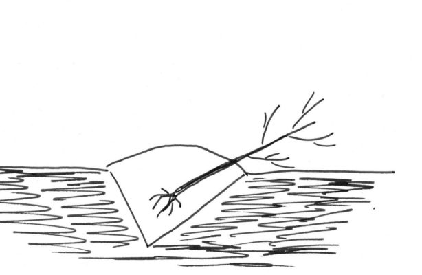 Рисунок прикопки саженца