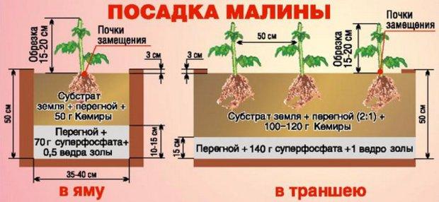 Схема заправки посадочной ямы