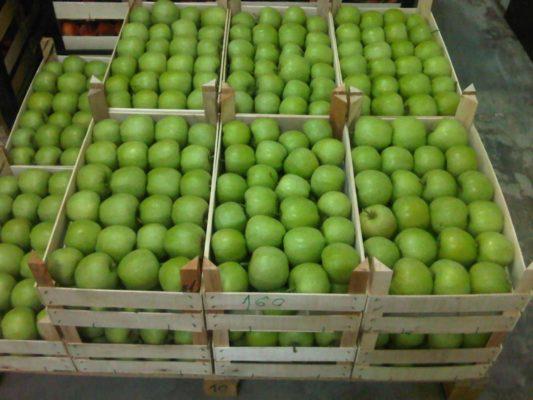 Хранение зелёных яблок в деревянных ящиках