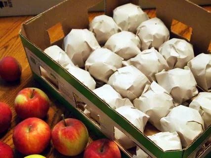 Яблоки, завёрнутые в бумагу