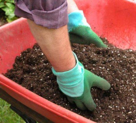 Удобрения для посадочной ямы